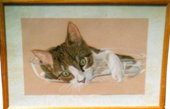 petit chat dans un plat,pastel
