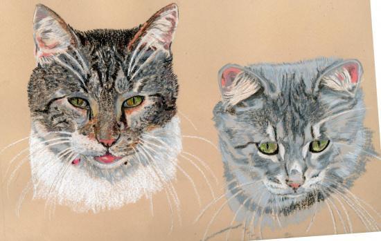 portraits de chats.Pastel.2012